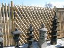 04 Bambusový plot XX